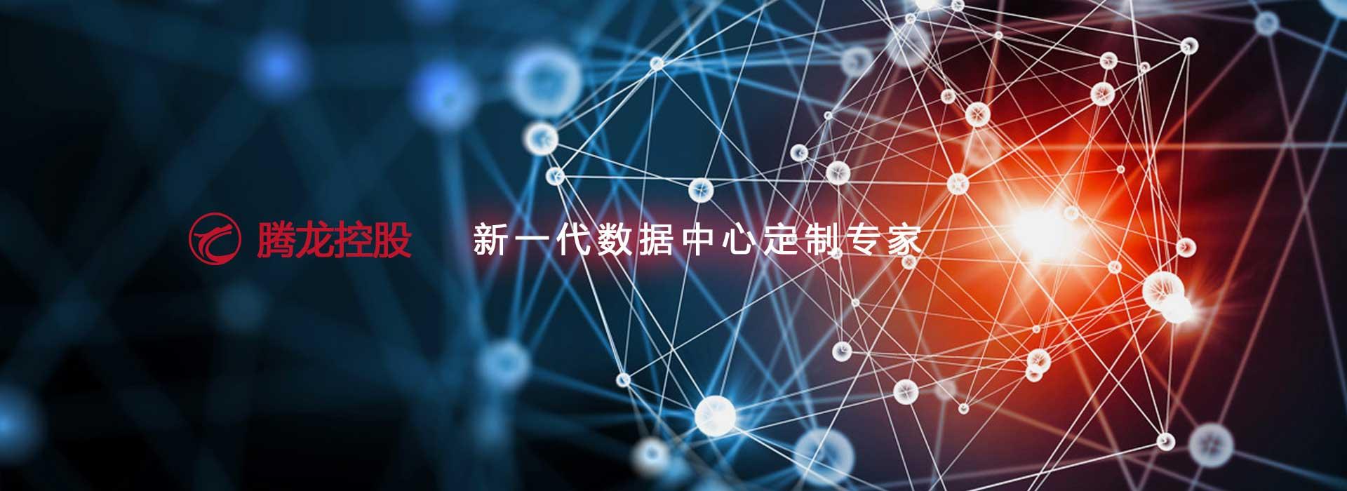 腾龙控股集团